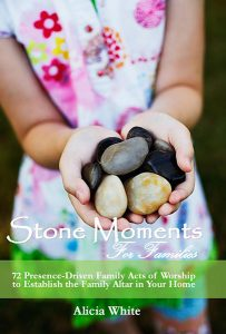 stone moments 2017 FAMILIES 8.99